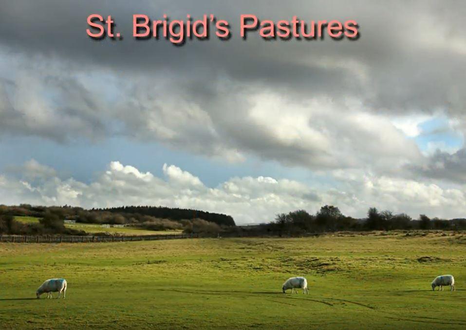 St Bridgids Pastures