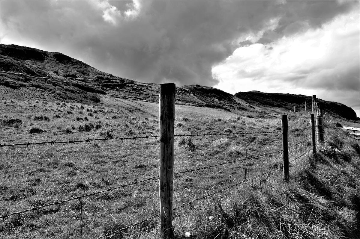 Michael Hand – Landscape