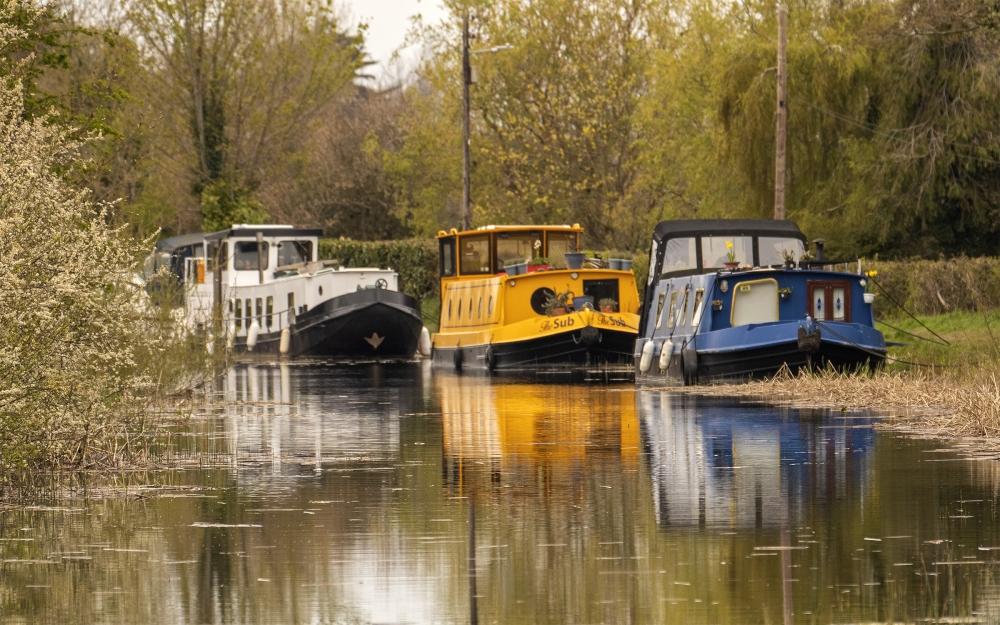 I251 Royal Canal at Confey