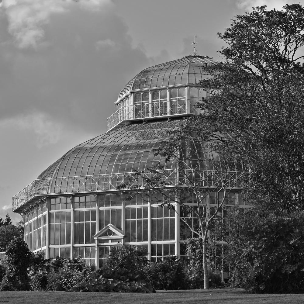 N389 Botanic Garden