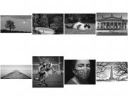 IPF National Shield 2020 - Celbridge Camera Club Mono Panel