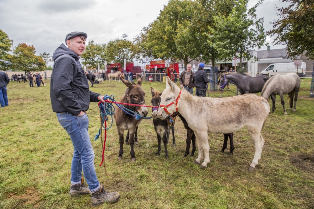 The Ballinasloe Horse Fair